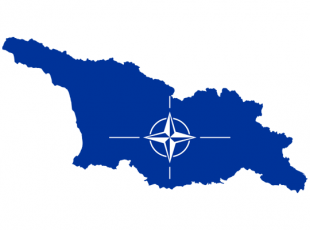 NATO Delegation in Georgia